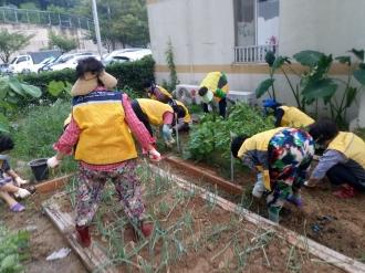 9월 아파트거점봉사단 상시 자원봉사활동 진행