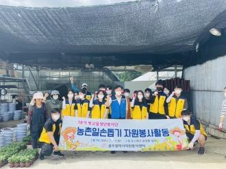 18기 빛고을청년봉사단 운정동 화훼농가 일대 농촌일손돕기